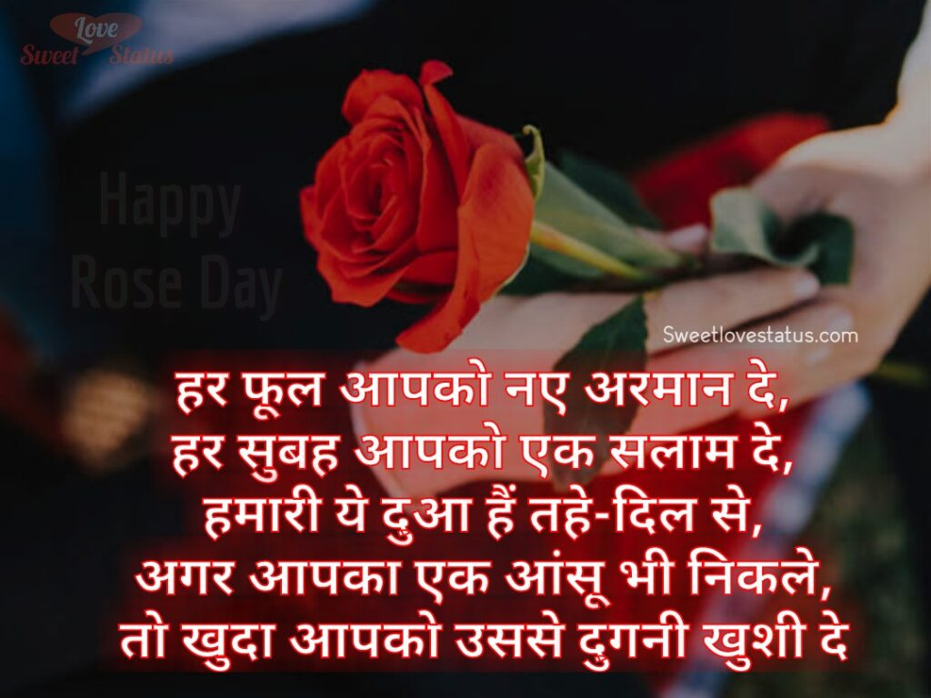 Rose Day Shayari Quotes, shayari on rose in hindi, shayari on rose flower in hindi, two line shayari on rose, gulab shayari 2 lines hindi,rose day shayari in english, rose shayari in hindi for girlfriend, rose status in hindi 2 line, rose image shayari,rose day wishes for wife in hindi,
